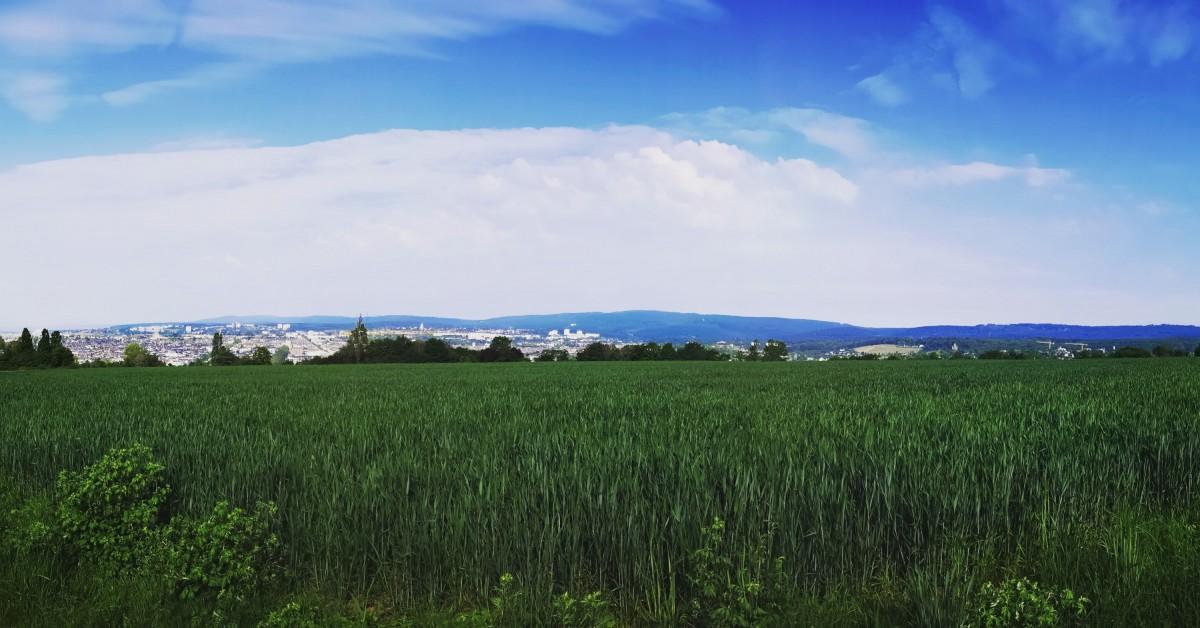 Panorama auf Wiesbaden